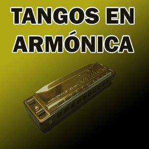 Tangos en Armónica
