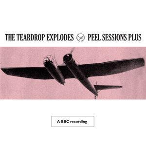 Peel Sessions Plus - BBC Version