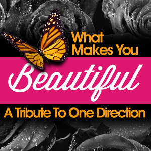 What Makes You Beautiful - A Tribute to One Direction