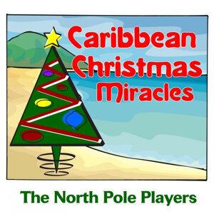 Caribbean Christmas Miracles