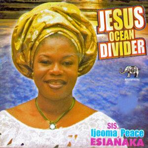 Jesus Ocean Divider
