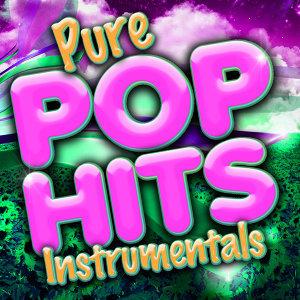 Pure Pop Hits Instrumentals