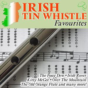 Irish Tin Whistle Favourites