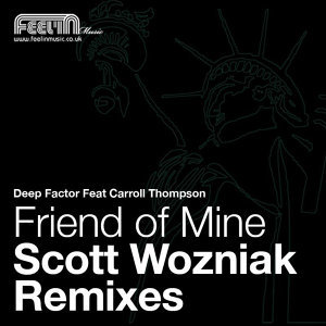 Friend of Mine: The Scott Wozniak Remixes