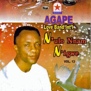 N'ulo Nnam N'igwe, Vol.13