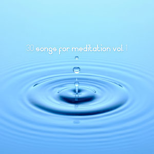 30 Songs for Meditation Vol. 1