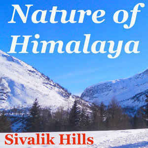 Nature of Himalaya