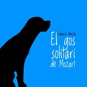 El gos solitari de Mozart