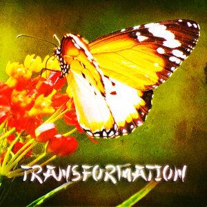 Zen & Relaxation: Transformation