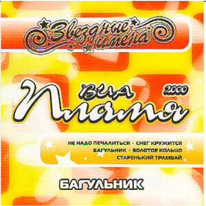 Star Name Via Plamya Labrador Tea (Звездные Имена - Виа Пламя 2000 Багульник)