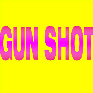 Gun Shot - Single
