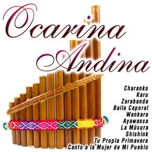 Ocarina Andina