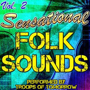 Sensational Folk Sounds Vol. 2