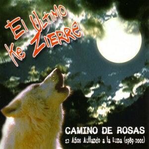 Camino de Rosas : 12 Años Aullando a la Luna 1989 - 2001