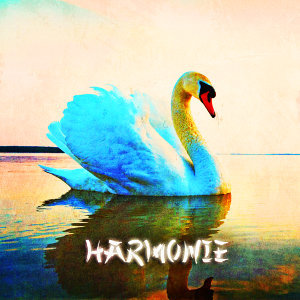 Zen & Relaxation: Harmonie