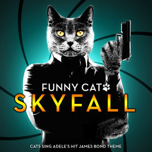 Skyfall - Cats Sing Adele's Hit James Bond Theme