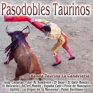 Pasodobles Taurinos
