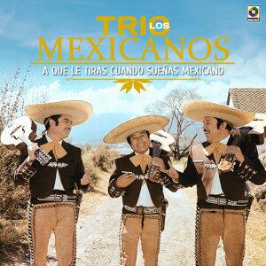 A Que Le Tiras Cuando Sueñas Mexicano