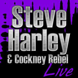 Steve Harley & Cockney Rebel Live
