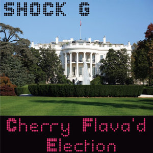 Cherry Flava'd Election - Single
