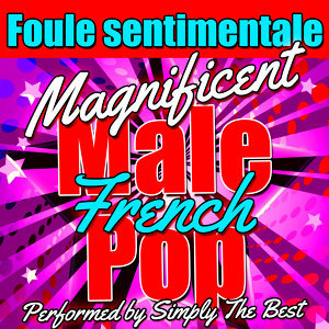 Foule Sentimentale: Magnificent French Male Pop