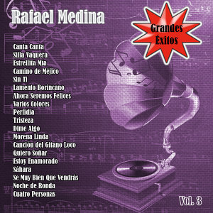 Grandes Éxitos: Rafael Medina Vol. 3