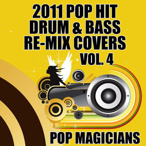 2011 Pop Hit Dubstep Re-Mix Covers Vol. 4