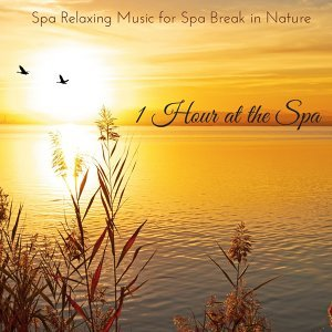 1 Hour at the Spa - Spa Relaxing Music for Spa Break in Nature