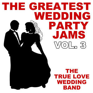 The Greatest Wedding Party Jams Vol. 3