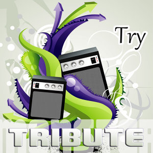 Try (Special Edition Tribute to Pink)