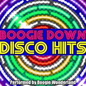 Boogie Down Disco Hits