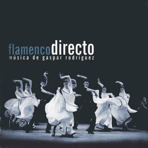 Flamenco Directo