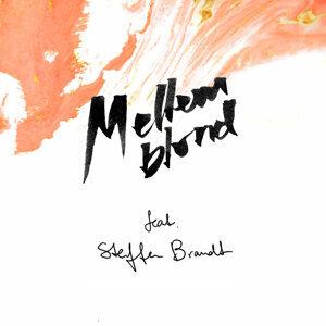 Hen Over Midnat (feat. Steffen Brandt)
