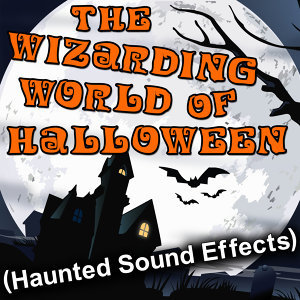 The Wizarding World of Halloween (Haunted Sound Effects)