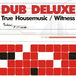 True Housemusic / Witness