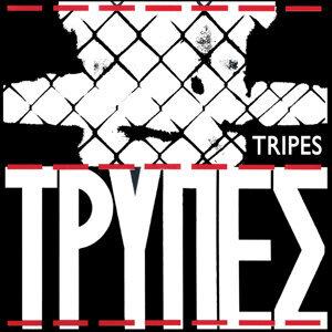 Tripes