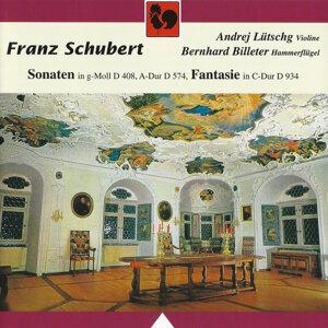 Schubert: Violin Sonata (Sonatina) in G Minor No. 3, Op. Posth. 137, D. 408 – Duo Sonata in A Major, Op. Posth. 162, D. 574 – Fantasy in C Major for Violin and Piano, Op. Posth. 159, D. 934