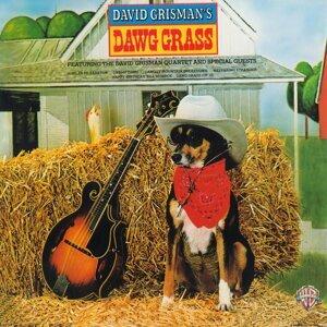 Dawg Grass