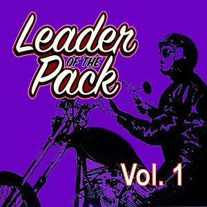 Leader of the Pack, Vol. 1