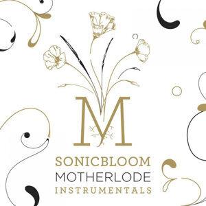 Motherlode Instrumentals