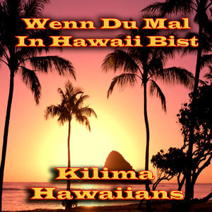Wenn Du Mal In Hawaii Bist