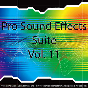 Pro Sound Effects Suite 11 - Bells and Chimes