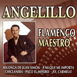 Flamenco Maestro