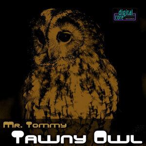 Tawny Owl - EP