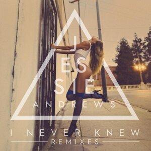 I Never Knew (Remixes)