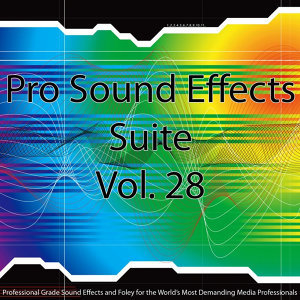 Pro Sound Effects Suite 28 - Metal, Rocks and Wood 2