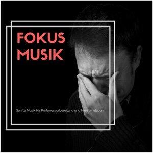 Fokus Musik - Sanfte Musik für Prüfungsvorbereitung und Hirnstimulation