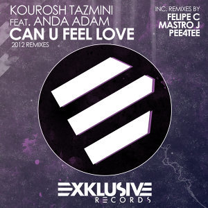 Can U Feel Love (2012 Remixes)