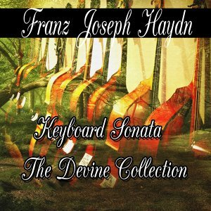 Franz Joseph Haydn: Keyboard Sonata The Divine Collection