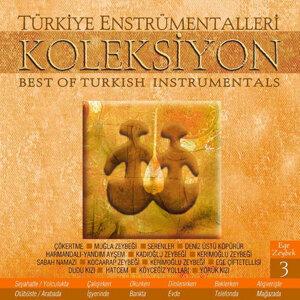 Türkiye Enstrümentalleri- III (Ege-Zeybek)